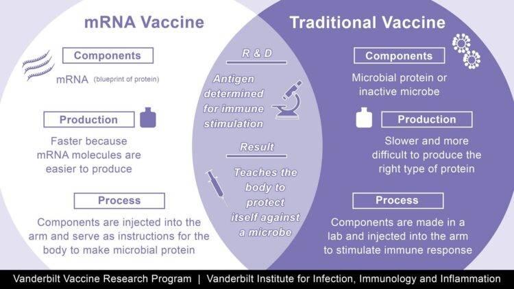 Vanderbilt Vaccine Venn Diagram
